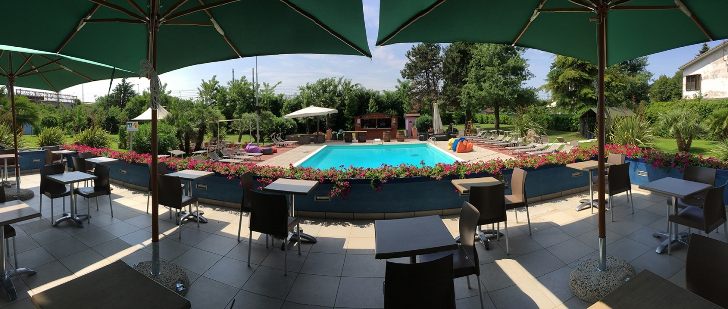 Our pool surrounded by a green garden