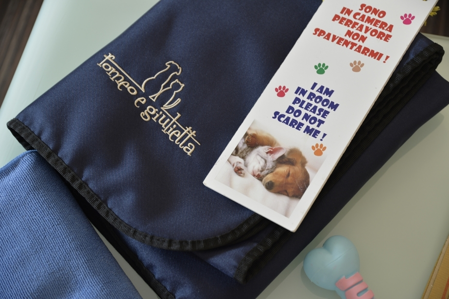 Services for your pet in the rooms of the Soave Hotel
